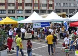 Terraè 2011
