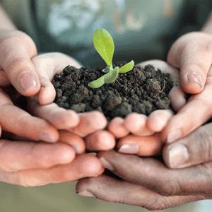 Agricoltura simbiotica